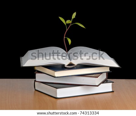 Avocado sapling growing from open book