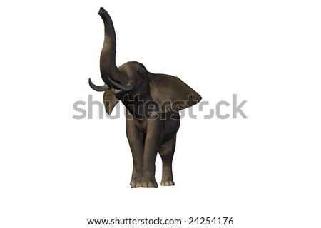 Awesome pachyderm male with enormous tusks. - stock photo