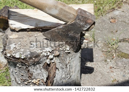Axe in wood, Chopping wood