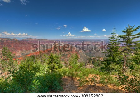 AZ-Grand Canyon-North Rim-This image was captured near the Vista Encantata viewpoint near Cape Royal. - stock photo