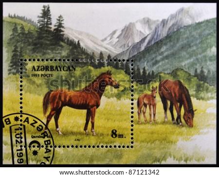 AZERBAIJAN - CIRCA 1993: A stamp printed in Azerbaijan shows a horse standing in a pasture, circa 1993. - stock photo