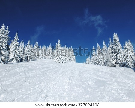 Azure Blue Sky and Pure White Snow