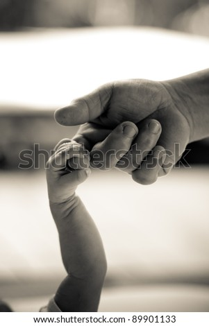 b&w photo baby hold mother finger on your hand - stock photo