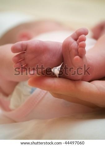 Babies legs - stock photo
