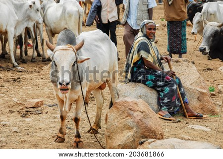 BABILE, ETHIOPIA - AUG 5: Various ethnic groups ethnic group of the Horn of Africa come to Babile market in Ethiopia to buy and sell cattle on August 5, 2007 in Babile, Ethiopia.