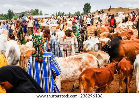 BABILE, ETHIOPIA - AUG 5: Various ethnic groups ethnic group of the Horn of Africa come to Babile camel market in Ethiopia to buy and sell camels on August 5, 2007 in Babile, Ethiopia. - stock photo