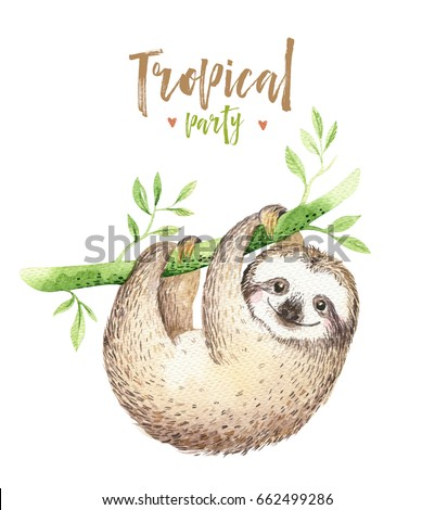 sloth stock images royaltyfree images amp vectors