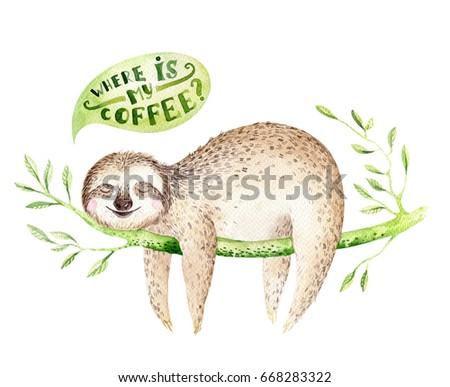 sloth stock images royaltyfree images amp vectors