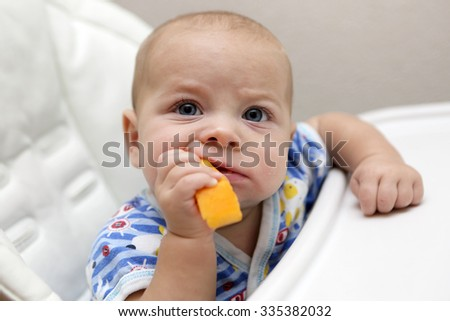 Baby biting pumpkin in the high chair - stock photo