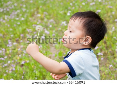 Baby blowing a dandelion - stock photo