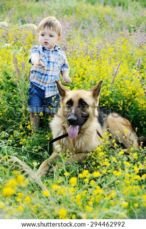 baby boy and dog Shepherd on the background of flower fields