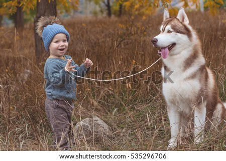 Baby boy in forest with husky dog