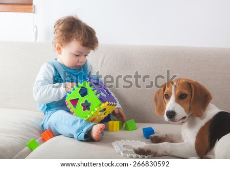 Baby boy playing with toys next to his beagle pet dog. - stock photo
