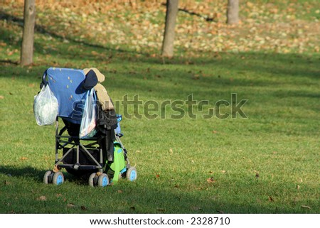Baby cart in the park
