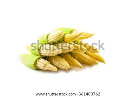 baby corn on isolated background - stock photo