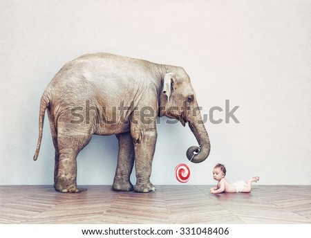baby elephant and human baby in an empty room. Photo combination concept - stock photo