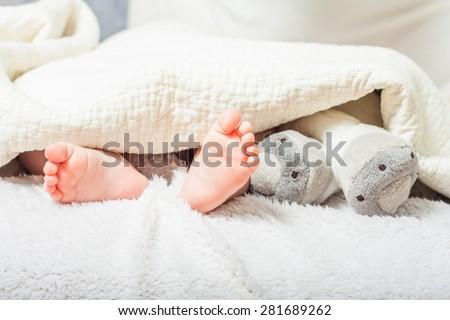 baby feet under a blanket . foot plush toys. tiny feet - stock photo