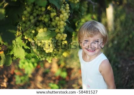 Baby girl in vineyard - stock photo