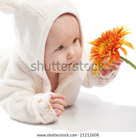 Baby in white examining orange daisy, isolated - stock photo