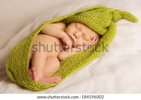 baby newborn portrait, kid sleeping in green woolen blanket, new born on white background  - stock photo