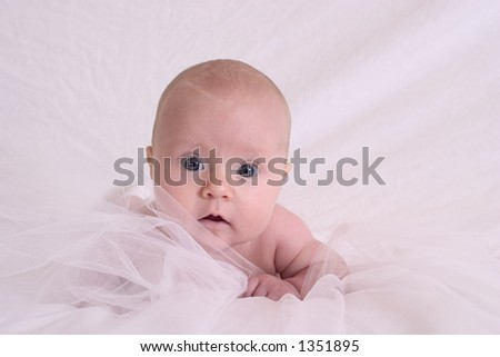 baby on white - stock photo