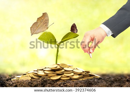 baby's hand in businessman suit putting a golden coin to a plant with butterfly growing on a pile of golden coins - New generation doing green business concept - stock photo