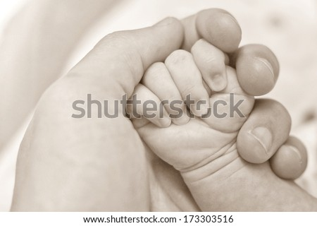 baby's hand / infant's hand - stock photo