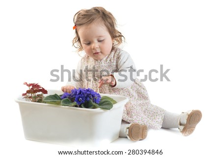 Baby sitting at flowers in a pot over the white background
