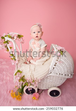 Baby sitting in a stroller pram, pink cherry blossom flowers and background - stock photo