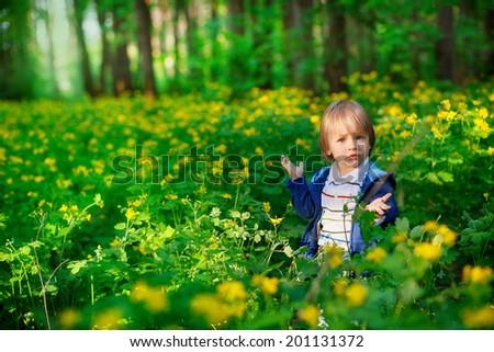 baby sitting in flowers, shrugs - stock photo