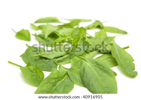 baby spinach leaves spread out isolated on white