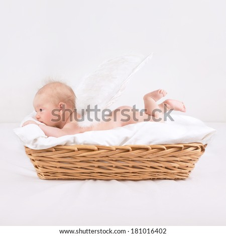 Baby with feather wings lying down in wicker basket isolated on white background, side view, sweet naked little angel, innocence concept