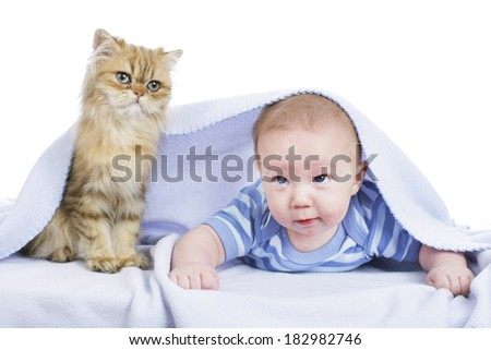 Baby with persian cat - stock photo