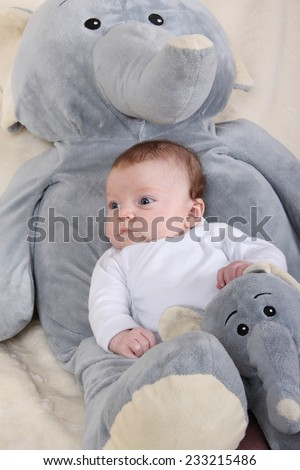 baby with plush elephants - stock photo