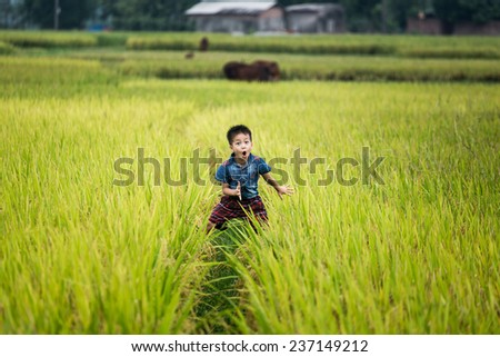 BAC GIANG,VIETNAM-JULY 10: Rural children playing in the rice fields. JULY 10,2014 in BAC GIANG, VIETNAM