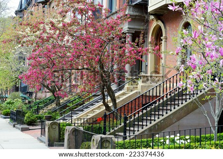 Back Bay Boston, elegant facades and gardens in early spring - stock photo