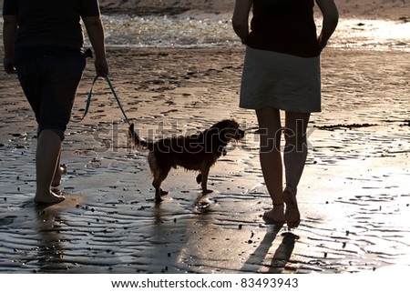 Back lit portrait of two women walking a cute borkie dog at the beach.