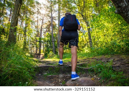 back view of male hiker on forest road - stock photo