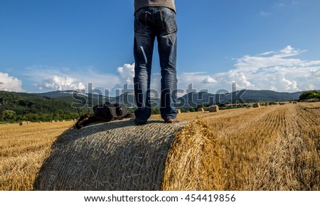 Back view of man on hay bale against farmland background - stock photo