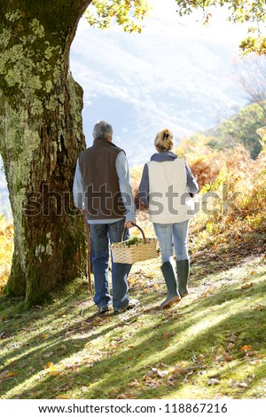 Back view of senior couple walking in forest - stock photo