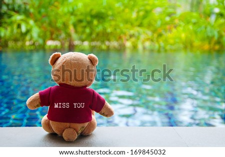 """Back view of Teddy Bear wearing red T-Shirt with text """"MISS YOU"""". Teddy Bear Sitting near Swimming Pool - stock photo"""