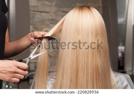Back view of woman getting new haircut by hairdresser at parlor. hairdresser cutting client's hair in beauty salon - stock photo