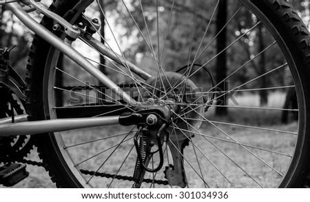 Back wheel of sports mountain bike on nature background black and white - stock photo