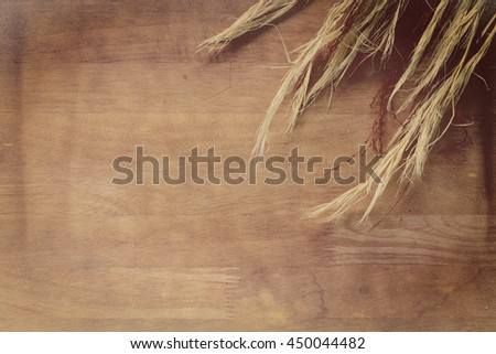 background abstract wooden color filters style