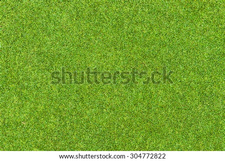 Background and texture of Beautiful green grass pattern from golf course - stock photo