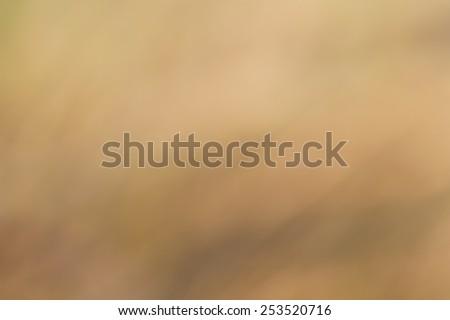 Background blur - stock photo