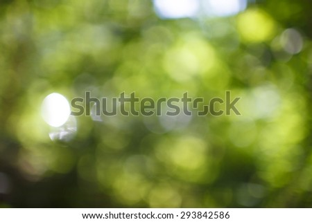 Background blur of nature in sunny summer day. Bokeh blur of forest. - stock photo