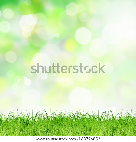 Background bokeh image. Summer and vacation concept