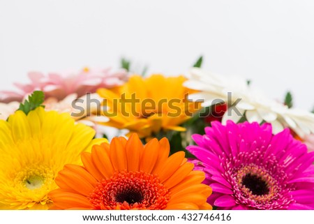 background bouquet of multicolored gerberas, a semicircle, with space for text - stock photo