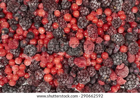 Background by frozen blackberries, raspberries and black and red currants - stock photo